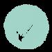 check-mark-icon_1DBR